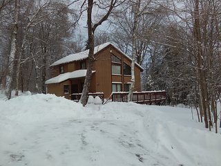 Mountain Retreat - Chimney Hill - 7 Miles to Mount Snow - direct VAST access