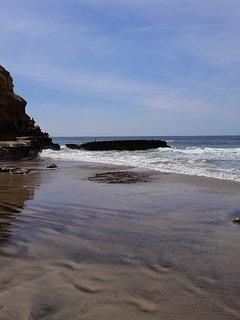 Neighboring La Jolla has pristine beaches