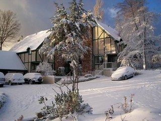 Mountain Retreat, Large Families, Reunions, Church Retreat w/ Lake & Bch access
