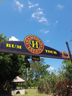 Hampden Estate Rum Tour with rum tasting with jerk chicken/pork lunch included