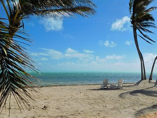 Paradise Beach Sandy Oceanfront
