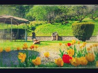 Maison de charme au coeur des chateaux de la Loire