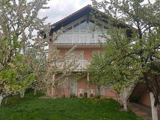 Apartments Ilidza - Entire House