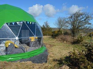 Pant y Rhedyn Bluebell Dome