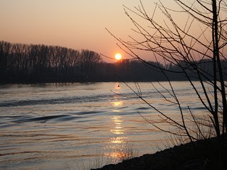 Romantische Ferienwohnung am Rhein, nahe Odenwald u. Bergstrasse