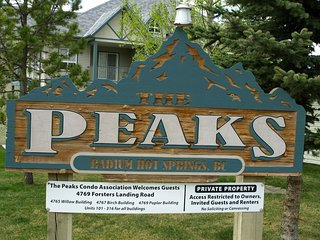 Peaks Willow 304