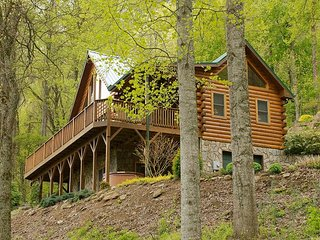 Charming 2 Bedroom Log Home, Enchanting Views,  Paved Access, Hot Tub