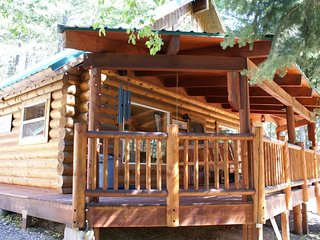 Big Game Cabin, Soaring Ceilings...3/BR...7/man hot tub..