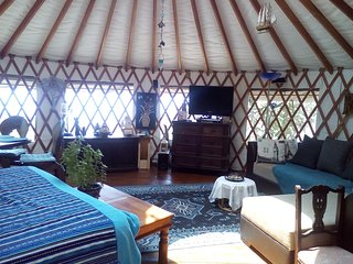 Modern Yurt set in an olive grove with lovely garden and sea view