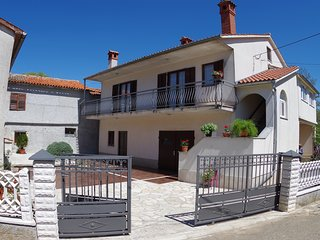 Holiday house in village Domijanici