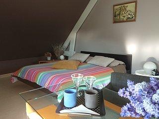 Chambre Suite Parentale avec Baignoire Jacuzzi - La Forge Vimbert -