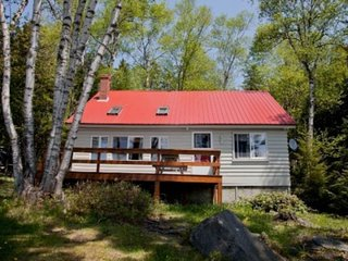 Dog-friendly, lakefront cabin with full kitchen, firepit, free WiFi, great views