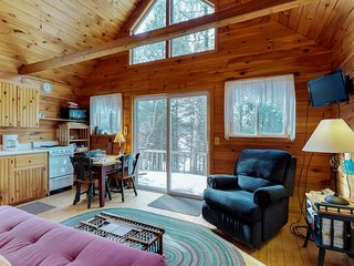 Lakefront cabin w/ pebble beach, private dock, and lovely lake views - dogs OK!