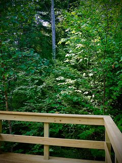 Come relax on your private deck and be refreshed in the woods of Maine at Treetop-Retreat.