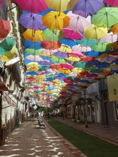Fantastic art installation in Agueda between June - Sept - well worth a visit!