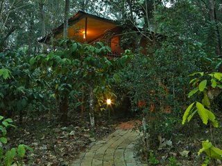 Thennal Jungle Traditional Cottage (Room 8)