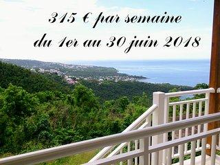 Côté Caraïbes : Studio Soleil avec très belle vue entre mer & forêt tropicale !