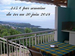 Côté Caraïbes : Studio Azur avec très belle vue entre mer & forêt tropicale !