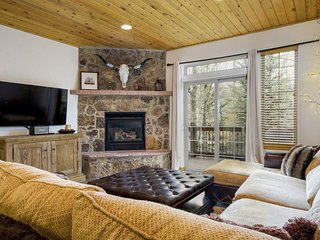 Charming Steamboat townhome, just five minutes from ski resort - Willow Chalet