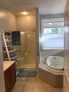 Large soaker tub and shower