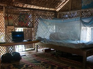 Bamboo Cottage in the Jungle
