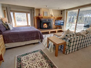 Lenawee 1728 Studio full size Kitchen, FREE WIFI/SHUTTLE to slopes, KING bed by