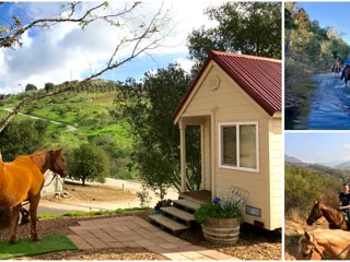 Imagine! A TINY HOUSE on a Fallbrook Ranch with Amazing TRAIL RIDE Option