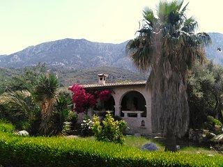 Gemütliches Zyprisches Ferienhaus