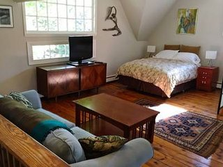 Woodstock Town Center Studio Apt.