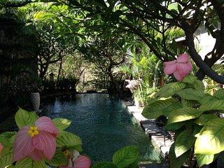 Villa Ananda Bali, ervaar het dorpsleven