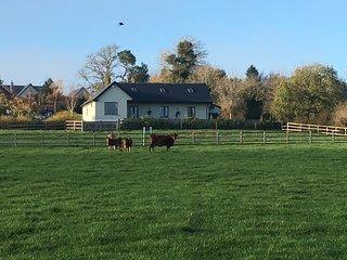 Deerpark Cottage, Co. Kildare, Ireland