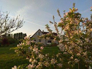 Charmante maison à Villandry au cœur des châteaux de la Loire