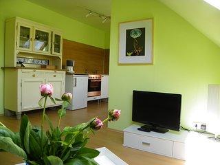 flat-4-rent Ihre zentral gelegene, komfortable Ferienwohnung