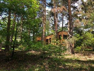 Nature, Bien-etre, Luxe et Chic dans les arbres proche de Colmar