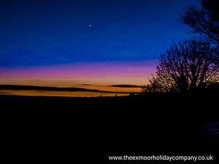 Exmoor Blue Bird - Challacombe