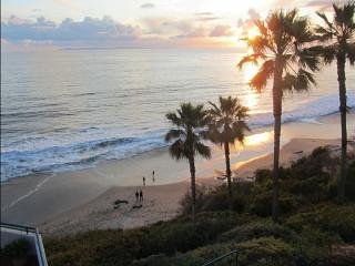 1A:LAST MINUTE BARGAIN! 8/6-10: WOW!!OCEANFRONT APARTMENT!Walk Beach,Everywhere!