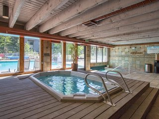 NEW LISTING! Cozy lakeview condo near shuttle pickup, w/shared pool & hot tub