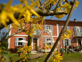B&B Bed & Tours - Servizi turistici  ...wake up and feel Monferrato!