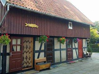 Guesthouse 'Nakvyne pas zveja' Cottage Oldtown
