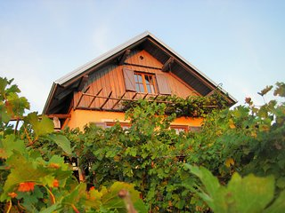 Zidanica Oplenk - experiance romantic vacations and discover Slovenia