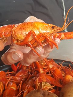 Crawfish anyone? Boil them right outside the cottage and throw them out on the picnic table..
