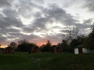 Glamping pod on the Somerset Levels (Gooseberry)