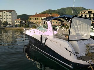 rent motor boat Sea Ray Sundancer 375