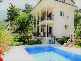 THE BEAUTIFUL 3 BEDROOM PRIVATE VILLA WITH NICE BABAMOUNTAIN VIEW
