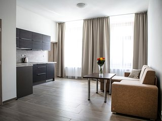 Euro Apartments Lidicka 39 Brno