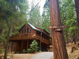 Big Trees Chalet - Exquisite Cabin in the Forest - Pets Allowed