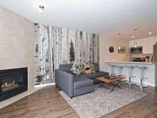 SUPERB Location in MARKETPLACE,WHISTLER VILLAGE. FULLY RENOVATED UNIT;Great Valu