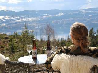 Boutique lodge with a great view 60 min from Oslo