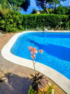 Sea view, quiet,close to beach & amenities large heated pool,sun all day