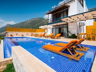 Newly Completed 3 Bedroom Villa with Secluded Pool and Beautiful Sea Views